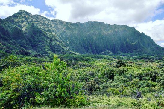 Oahu Itinerary - Ho'omaluhia Botanical Garden