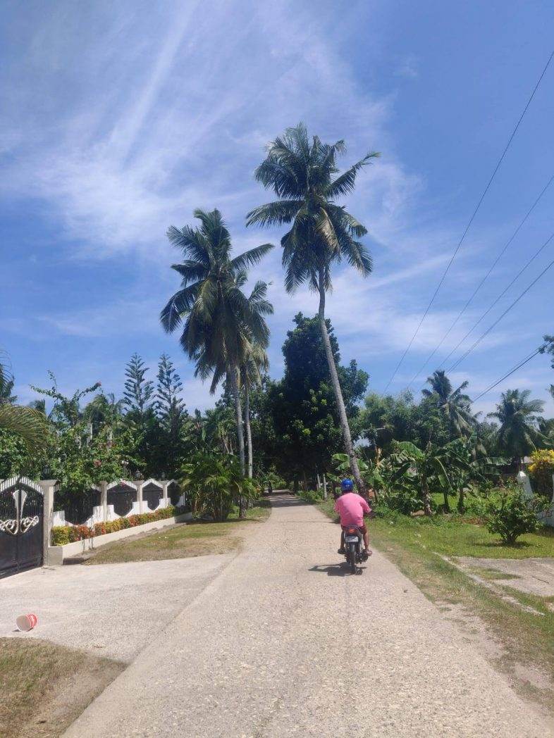 Best things to do in Bohol by motorbike